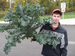 photo courtesy of Helen Green On Sept. 24, Dylan Carter shows off an impressive harvest of kale grown at Diamond Jenness Secondary School.