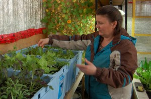 NNSL file photo Jackie Milne is the driving force behind the Northern Farm Training Institute.