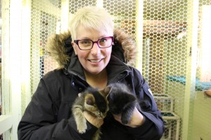 Hay River SPCA president Lesli Ward is currently taking care of eight kittens at her home until they can be found homes. Photo by Sarah Ladik NNSL