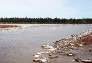 Diana Yeager/NNSL photo From the West Channel Bridge on May 1, it could be seen that the Hay River as it enters the West Channel was largely free of ice. On the left of the photo, the East Channel remained blocked with ice.