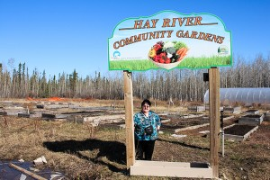Diana Yeager/NNSL photo Pat Burnstad shows off the plots at the Hay River Community Gardens tucked away in the industrial section of town. The gardens will be ready to use at the end of the month.