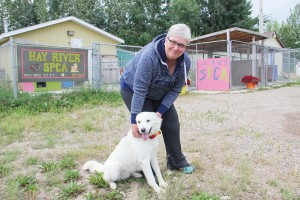 Paul Bickford/NNSL photo Heather Foubert, the president of the Hay River SPCA, plays with a dog at the community's animal shelter on Aug. 11.