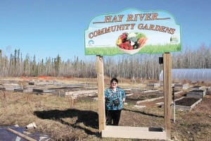 NNSL file photo Last May, Pat Burnstad showed off the plots at the Hay River Community Garden tucked away in the industrial section of town.